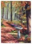 Path in the Forest Prayer Cards